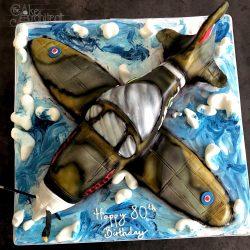 Celebration Cake Sculpted Aeroplane