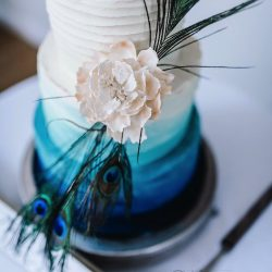 Wedding Cake 3 Tier Buttercream ombre with peacock feather